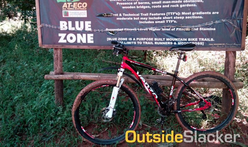 Timberland Blue Zone