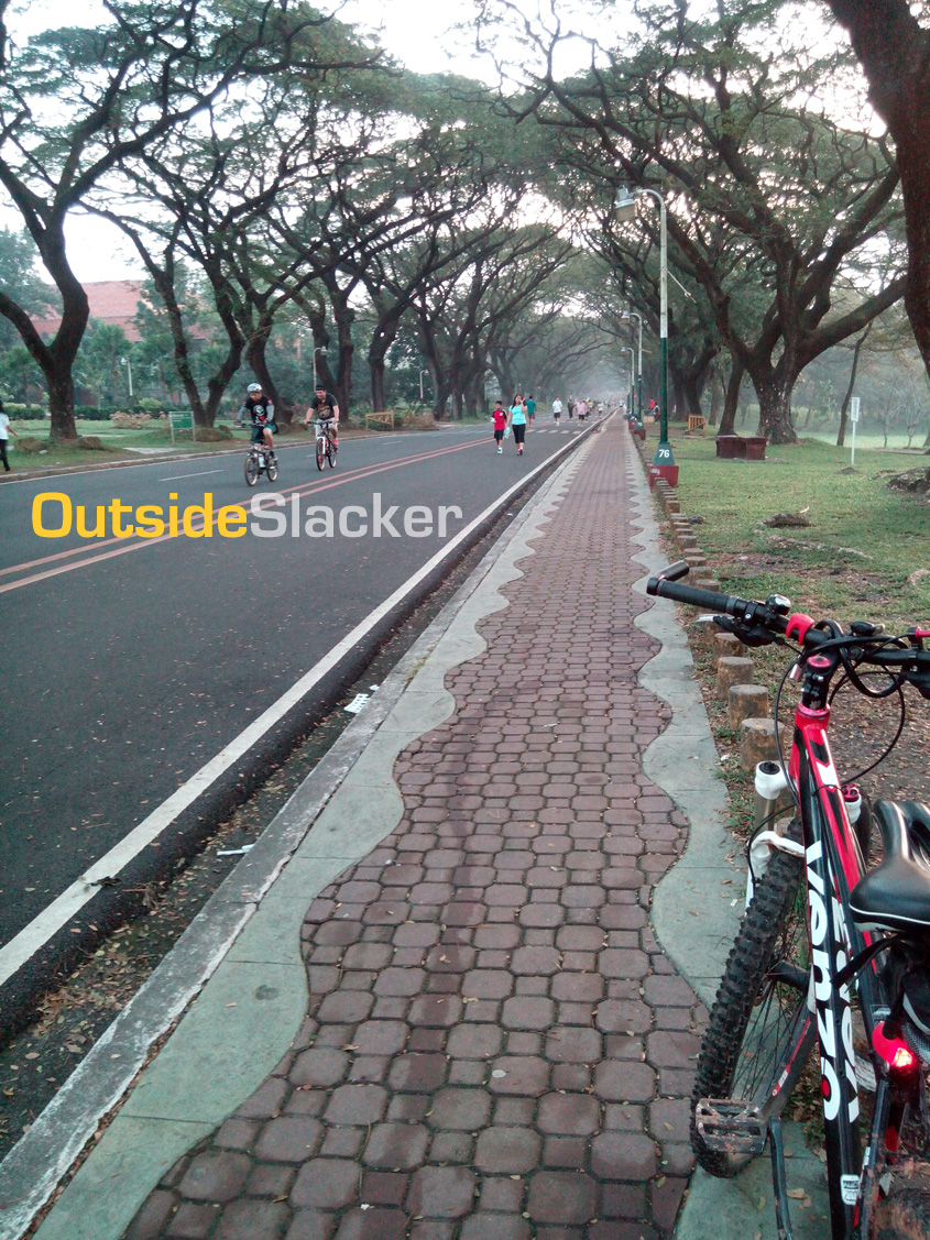 U.P. Diliman in the early morning