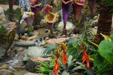 Mythical world of Na'vi comes to life at Disney's Animal Kingdom
