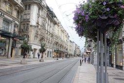 Geneva6