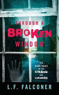 Through A Broken Window book cover