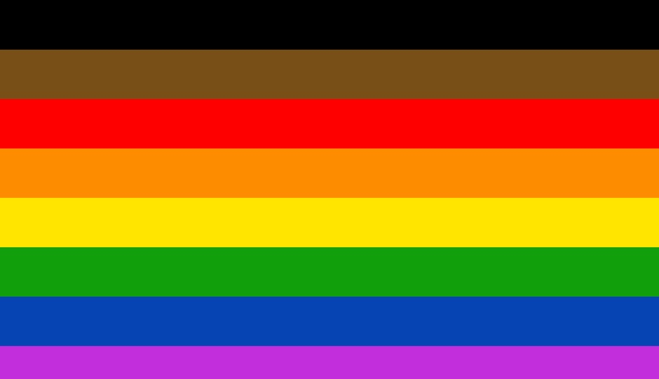 Image result for lgbtq flags