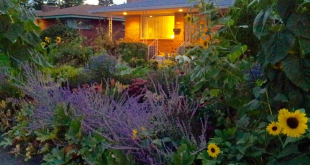 Urban Permaculture: Design Your Own Backyard Oasis | Out ... on Backyard Permaculture Design id=75537