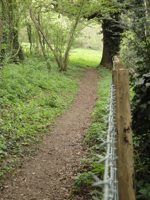 Queensdown warren path