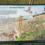 darland banks info board