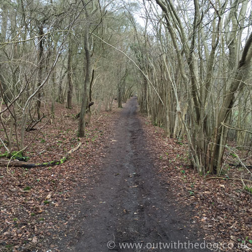 Blue Bell Hill Cycle Path