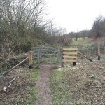 Queendown Warren - Kissing gate.