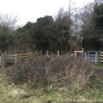 Queendown Warren - Kissing Gates