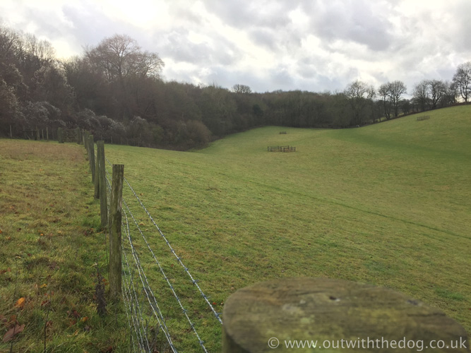 Hucking Field view