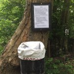 Greatpark wood - Notice and bins located around the woodland.