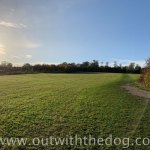 Lullingstone Country Park: View towards top of main field