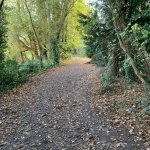 Lullingstone Country Park: Footpath
