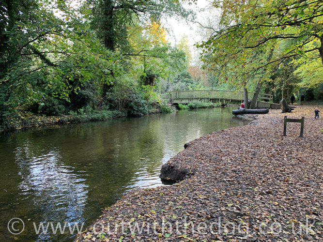 Lullingstone Country Park: View of the river