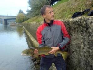 Bâle : le retour du saumon sauvage