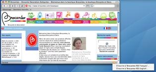 Firefox-Decouverte-Flux-Rss-Brocanteo-2