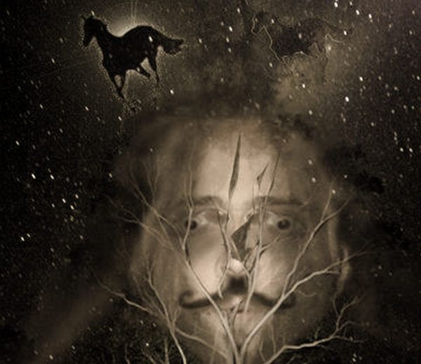 Artist - Stellar Ink Pony