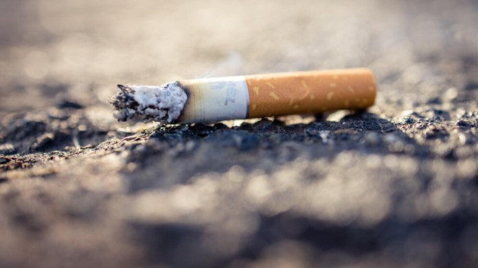 Sigara, kanserden ölümlerin dörtte birinden sorumlu