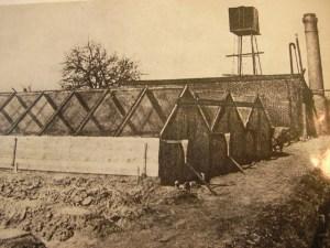 De Proeftuin aan de 's-Gravenzandseweg in Naaldwijk, waarvan Karel Wiersma de eerste directeur was (klik op de foto!)