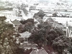Links bovenaan steekt het dak van het huis van tandarts Langerveld boven het geboomte uit.