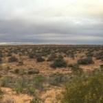 K1 Dune Panorama