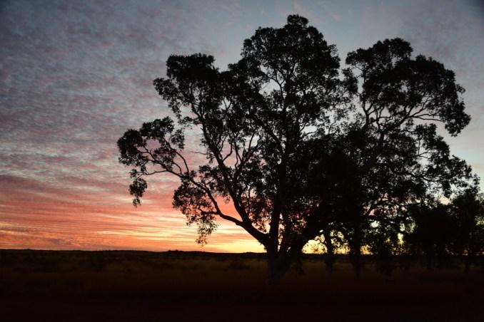 sunset near well 38