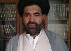 کوئٹہ کے مظلوم مظاہرین کے ساتھ اظہاریکجہتی انتہائی قابل ستائش ہے، علامہ ڈاکٹر سید زوار حسین نقوی