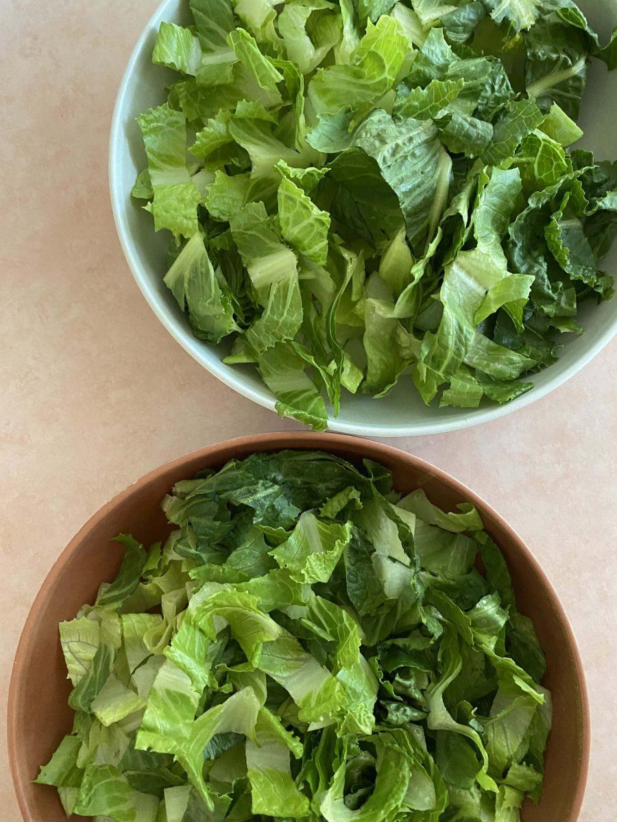 2 bowls of romaine lettuce