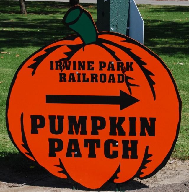 Pumpkin Patch Sign Board