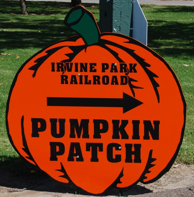 Pumpkin Patch Sign Board
