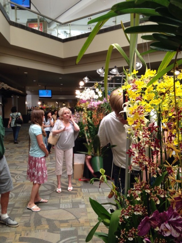 Orchid Show 1