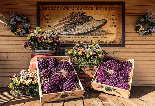 Boysenberry-Festival-Train-Decorations-650px