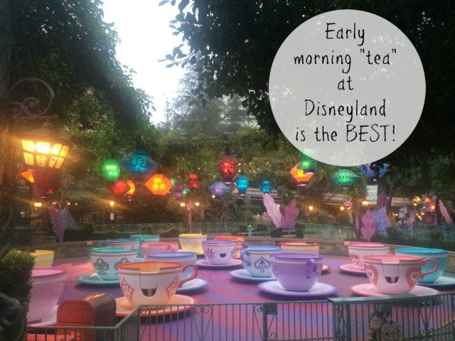 early-morning-tea-at-disneyland