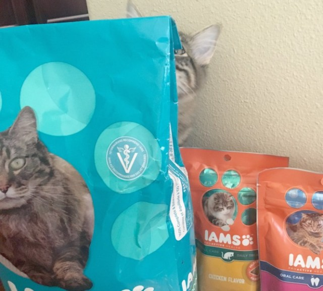 iams-dry-food-hide-behind