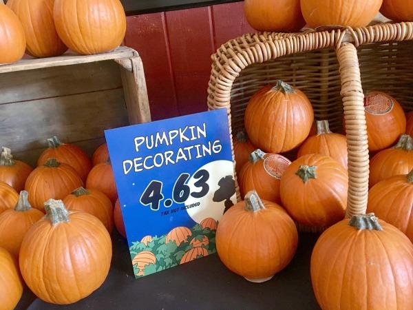 knotts-spooky-farm-paint-a-pumpkin