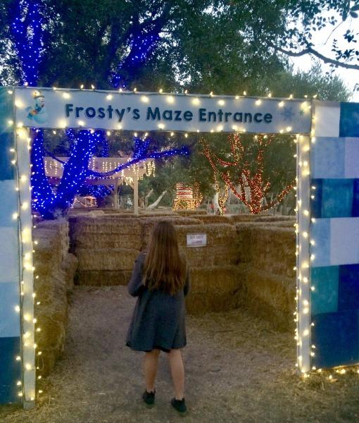 frostys-maze