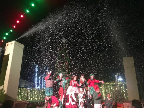seaworld-christmas-celebration-snow