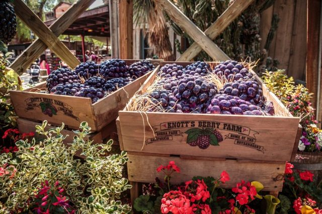 knotts-boysenberry-festival-boysenberry-cart