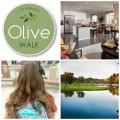 olive-walk-collage