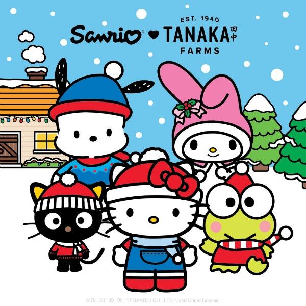 sanrio-tanaka-farms-holiday-village-1