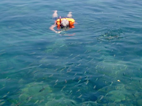 Snorkellen bij Talu eiland