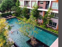 khun khey swimming pool