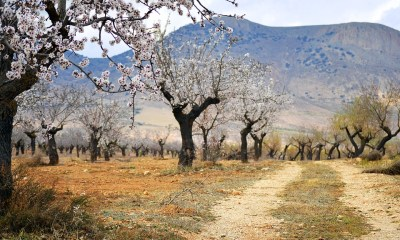 The Natural Beauty of Andalucia Gives Rise to Growing Eco-Tourism
