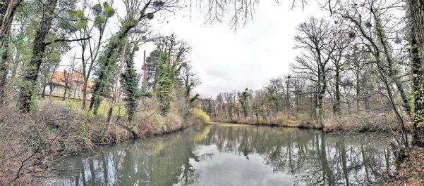 Efeuverfall Ehrlicher Park