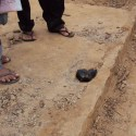 Possível meteorito é encontrado na Mata Norte de Pernambuco, Brasil 45
