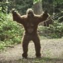 A procura pelo 'Bigfoot' é feita com 70 cientistas de todo o mundo 18