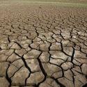 Terra entra em nova fase de extinção 15