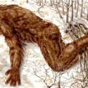 Corpos de 'abomináveis homens da neve' (Bigfoot) encontrados em montanha devastada? 12