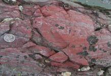 Fósseis mais antigos da Terra