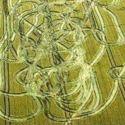 Quando os agroglifos não saem tão caprichados (humor) 3