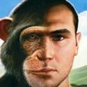 Híbridos macacos-humanos: Isto não aconteceu e não pode acontecer 1